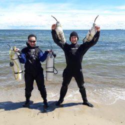 nauka nurkowania gdańsk