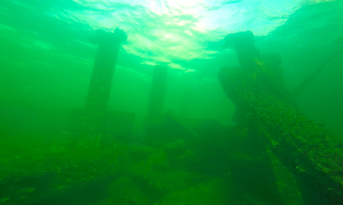 Nauka nurkowania Gdynia